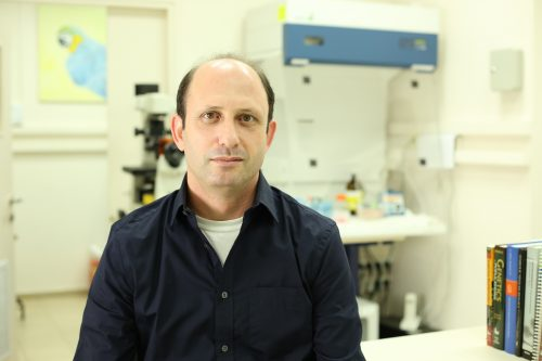 NoamShomron in lab Photo by Sion Ninio 2 500x333